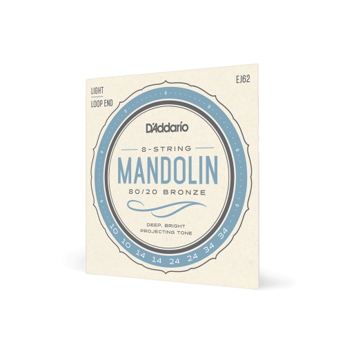 D'ADDARIO CORDE PER MANDOLINO 80 20 BRONZE LIGHT EJ62